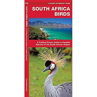 South Africa Birds (A Pocket Naturalist Guide)