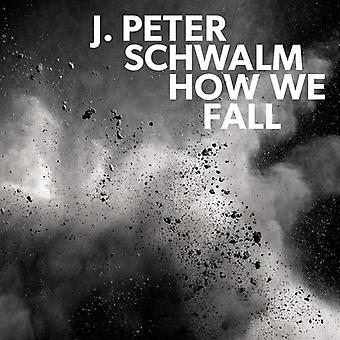 Schwalm*Jan-Peter - How We Fall [CD] USA import