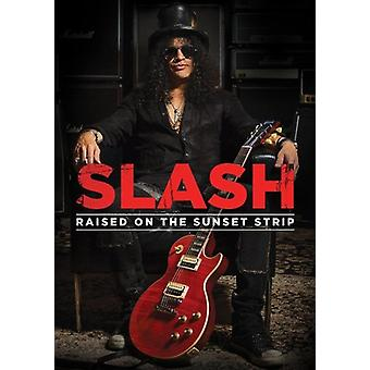 Slash - Raised on the S(DVD) [DVD] USA import