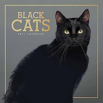 Otter House 2021 Wall Calendar- Black Cats
