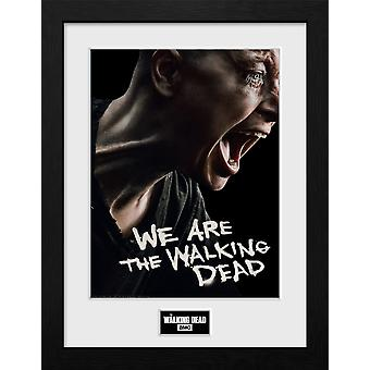De Walking Dead Alpha Collector Print