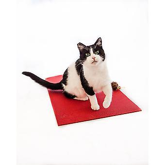 Feline Yogi Katze Matte -rot