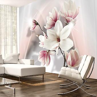 Fototapete - White magnolias