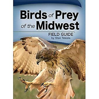 Guide de champ des rapaces du Midwest