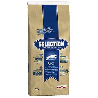 Royal Canin Selection HQ Croc Adult (Dogs , Dog Food , Dry Food)