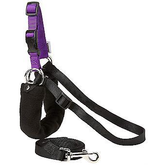 Ancol Pure Dog Listener Harness & Lead Set - Medio (Dimensione 4-6)