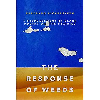 The Response of Weeds: A Misplacement of Black Poetry on the Prairies (Crow Said Poetry)