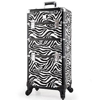 Travel Trolley, Makeup Box, Beauty Case, Professional Large Luggage Suitcase