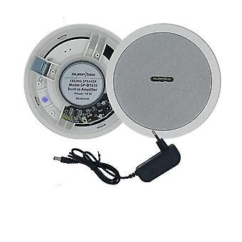 עמיד למים מובנה דיגיטלי סוג D מגן רמקול Bluetooth ותקרה