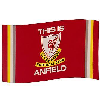 Liverpool FC TIA Flag