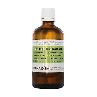 Eukalyptus utstrålad cellgiftstypad eterisk olja - blad 30 ml eterisk olja