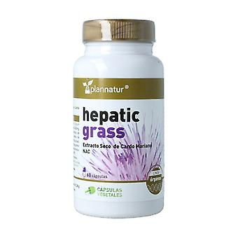 Hepatic Grass dry extract Milk Thistle 60 capsules