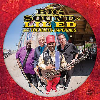 Lil' Ed & den Blues Imperials - The Big Sound of Lil Ed och Blues jag [CD] USA importerar