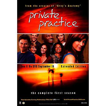 Private Practice (TV) Movie Poster (11 x 17)