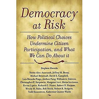 Demokratin riskerar: mot en statsvetenskap av medborgarskap