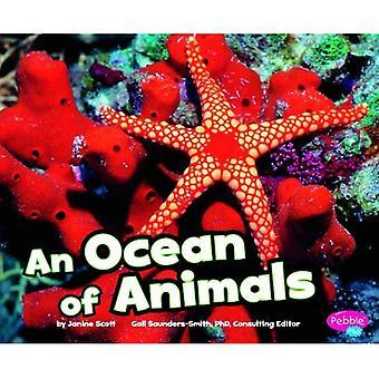 Een oceaan van dieren