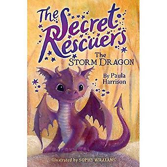 Le Dragon de l'orage (sauveteurs Secret)