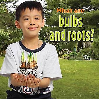 What are Bulbs and Roots? by Molly Aloian - 9780778742258 Book