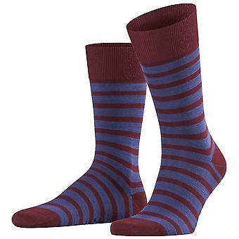Falke Even Stripe Socks - Barolo Burgundy