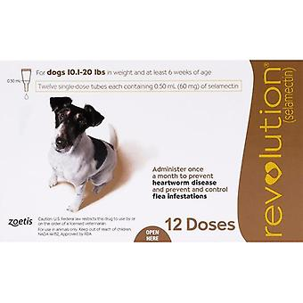 Revolution For Dogs 10-20lbs (5-10kg) - 12 Pack