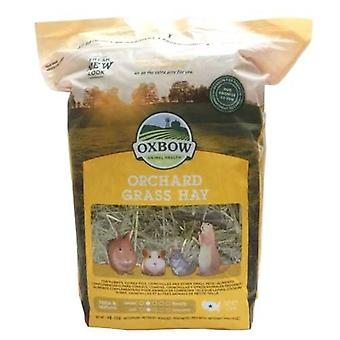 Oxbow Western Orchard Grass Small Pet Food