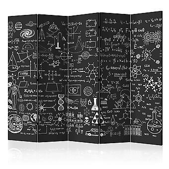 Sermi - Science on Chalkboard II [Room Dividers]