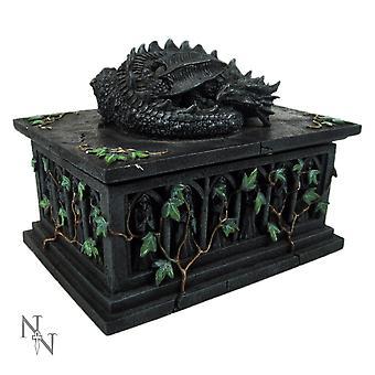 Dragon Tarot Kaart Doos