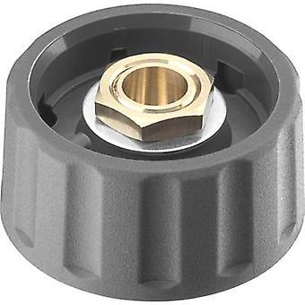 Ritel 66 28 76 2 Control knob + continuity Grey (Ø x H) 28 mm x 13.8 mm 1 pc(s)