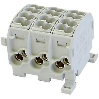 HoraeTec 080130-0-4 Main tap terminal Grey 3-pin 25 mm² Conductor type = L