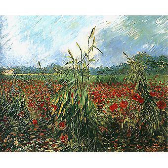 Green Ears of Wheat,Vincent Van Gogh,65x54cm