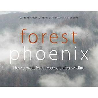 Forest Phoenix - How a Great Forest Recovers After Wildfire by David B