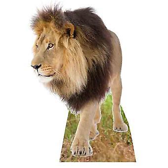 Lion - Lifesize pahvi automaattikatkaisin / seisoja
