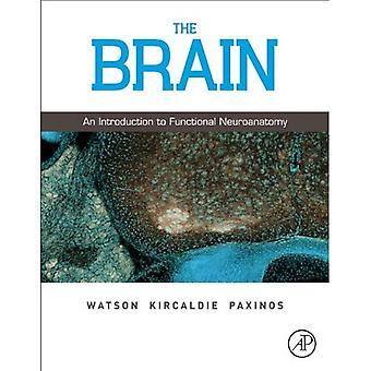 Le cerveau: Une Introduction à la neuroanatomie fonctionnelle