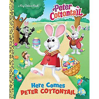 Here Comes Peter Cottontail (grand livre d'or)