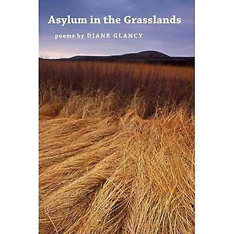 Asylum in the Grasslands