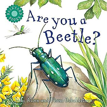 Är du en Beetle?