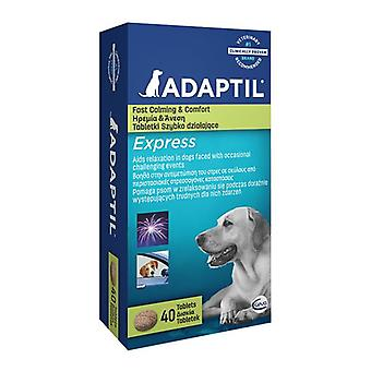 Adaptil Express-tabletit-40 Pack