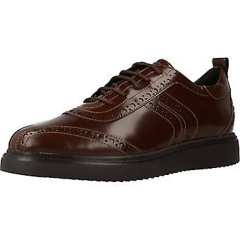 Sapatos Geox Casual D Thymar Color C0013