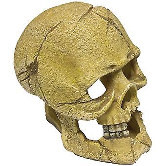Ica Skull Skull Resin (Fish , Decoration , Rocks & Caves)