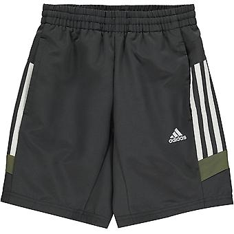 adidas Tri Pantaloni scurți colorați Junior Boys