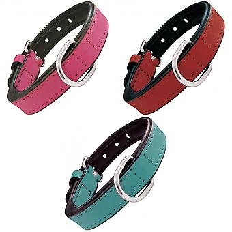 Gloria Padded Leather Dog Collar