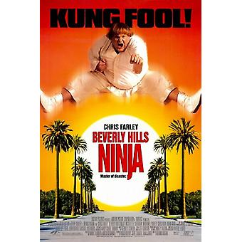 Beverly Hills Ninja Movie Poster (11 x 17)