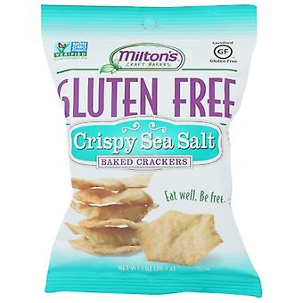 Miltons Cracker Baked Ssalt Gf, Case of 24 X 1 Oz