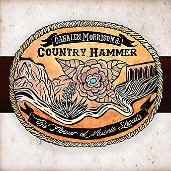 Cahalen Morrison & Country Hammer - Flower of Muscle Shoals [CD] USA import