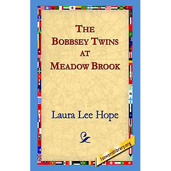 The Bobbsey Twins at Meadow Brook by Hope & Laura Lee