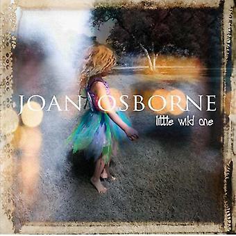 Joan Osborne - Little Wild One [CD] USA import