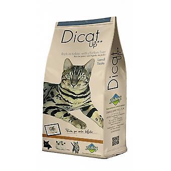 ディカトアップ土地の味(猫、食べ物、私は思う)