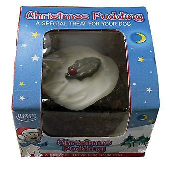 Hatchwells chien Pudding de Noël