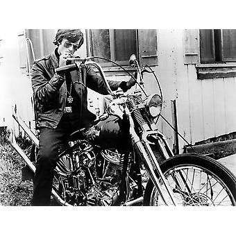 ワイルド ・ エンジェルのピーター ・ フォンダ 1966 写真印刷