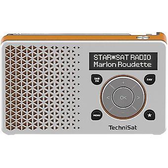 FengChun DIGITRADIO 1 tragbares DAB+ Radio mit Akku (DAB, UKW, FM, Lautsprecher, Kopfhrer-Anschluss,